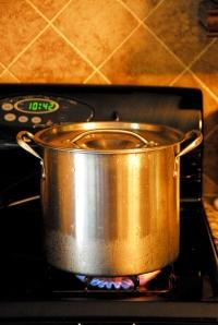 Use a good sized pot